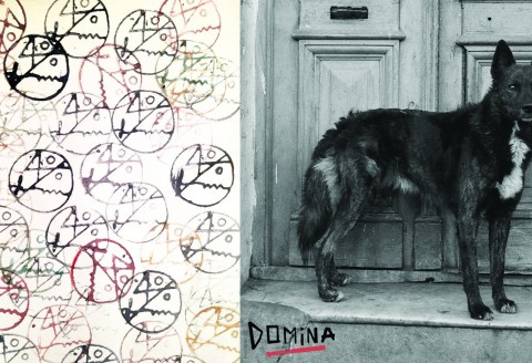 Domina_40